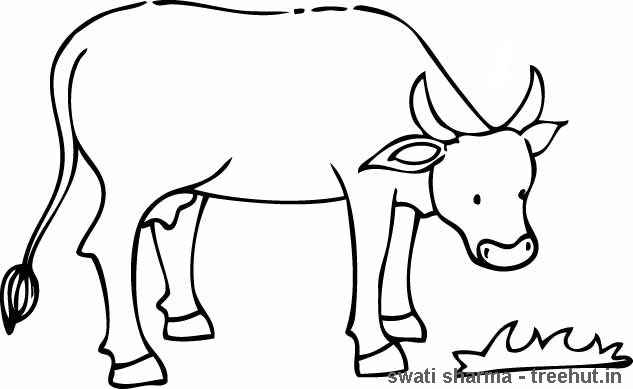 painting cow coloring pages - photo#27