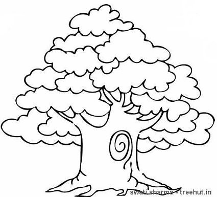 Trees Coloring Pages Set 3