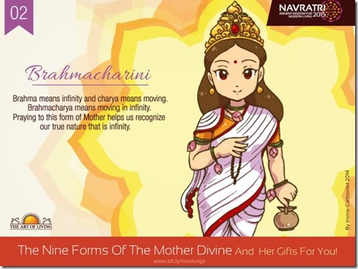 Durga maa, Art of Living Navratri (14)