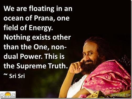 Gurudev Sri Sri Ravi Shankar Quotes (10)