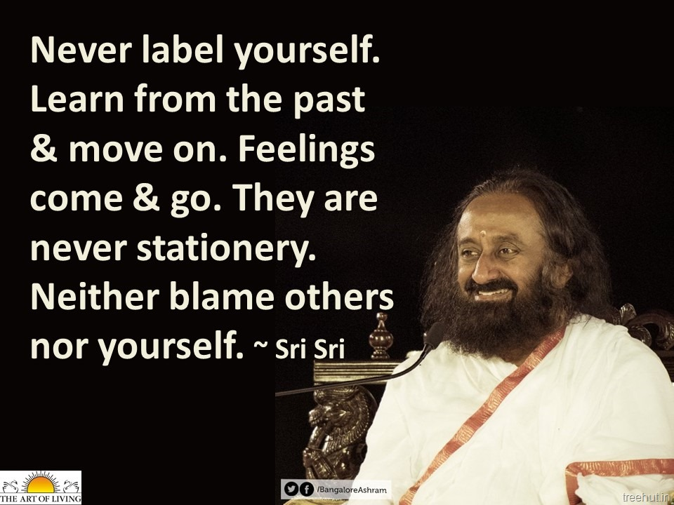 quotes by gurudev sri sri ravi shankar the art of living