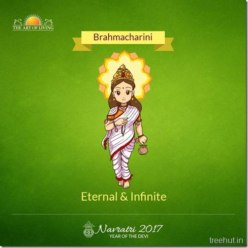 Brahmacharini Devi Ma Art of Living Navratri