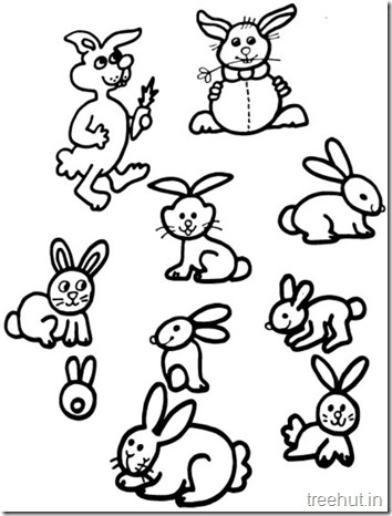 Cute Bunny Rabbit Coloring Pages (5)