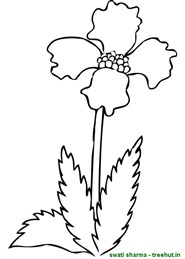 flower coloring pages (1)