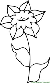 Flower coloring page for art therapy