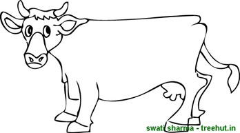 standing cow coloring page