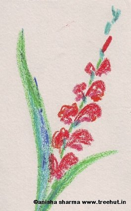 Gladioli by Anisha Sharma