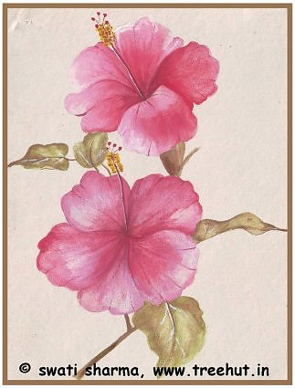 Water color Pink Hibiscus Shoeflower art idea