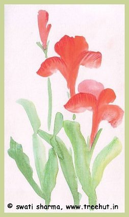 Canna flowers in water color art idea