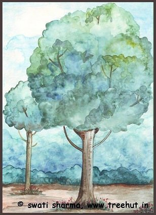 water color mango trees Malihabad art idea India