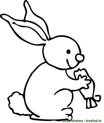 Rabbit Eating Carrot Coloring Sheet