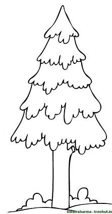 kids under pine trees coloring pages | Trees Coloring Page
