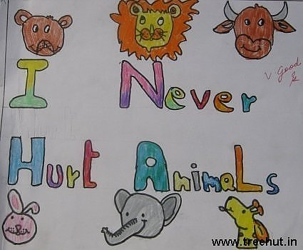I never hurt animals Child art ideas by Akshita Kureel Study Hall school Lucknow India