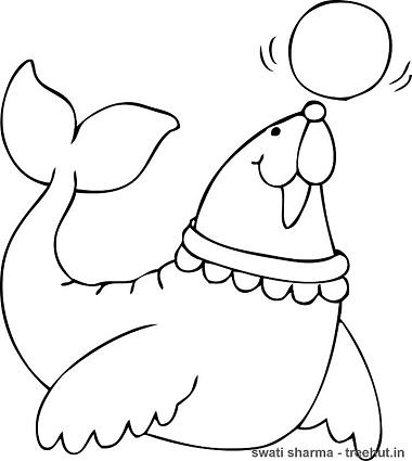Elephant Seal Coloring Page Sketch Coloring Page