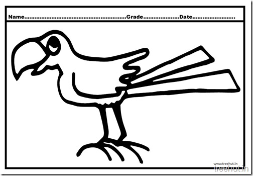 Parrot Coloring Pages (4)