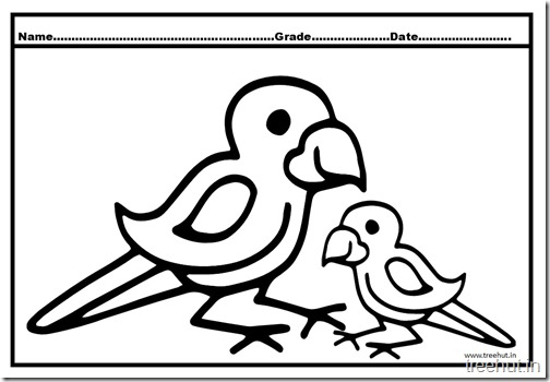 Parrot Coloring Pages (7)