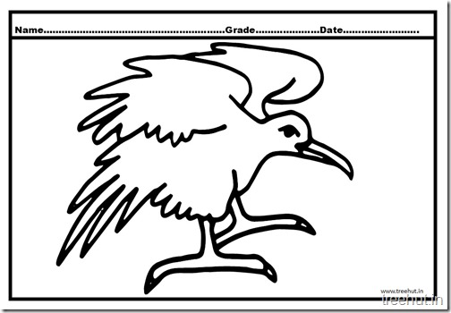 Eagle coloring pictures (2)