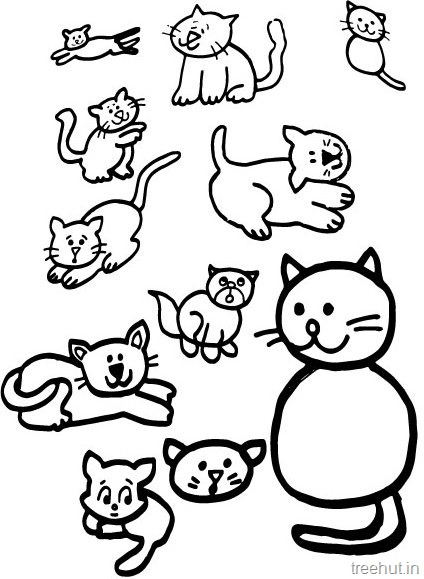 Cat Drawing and Coloring Pages
