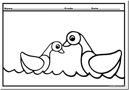 Duck Duckling Coloring Pages (1)