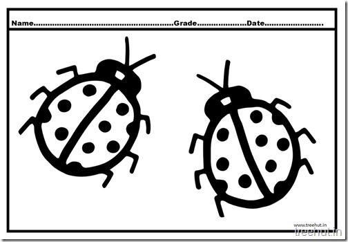 Ladybird Coloring Pages (1)