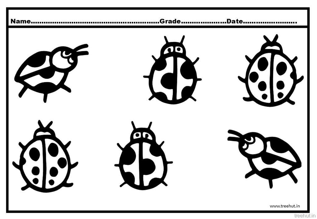 Ladybird Coloring Pages
