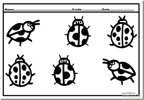 Ladybird Coloring Pages (4)