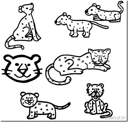 Leopard Drawing and Coloring Pages (1)