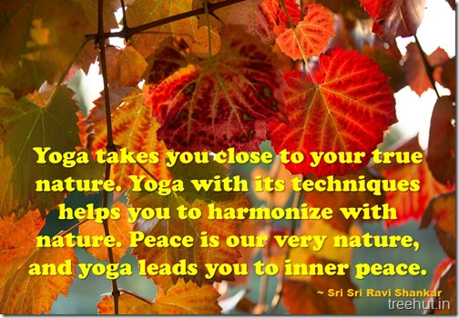 Meditation Quotes By Sri Sri Ravi Shankar (4)
