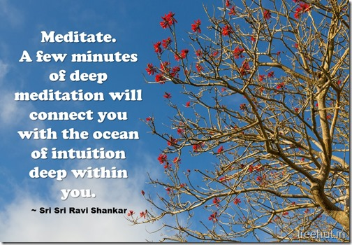 Meditation Quotes By Sri Sri Ravi Shankar (8)