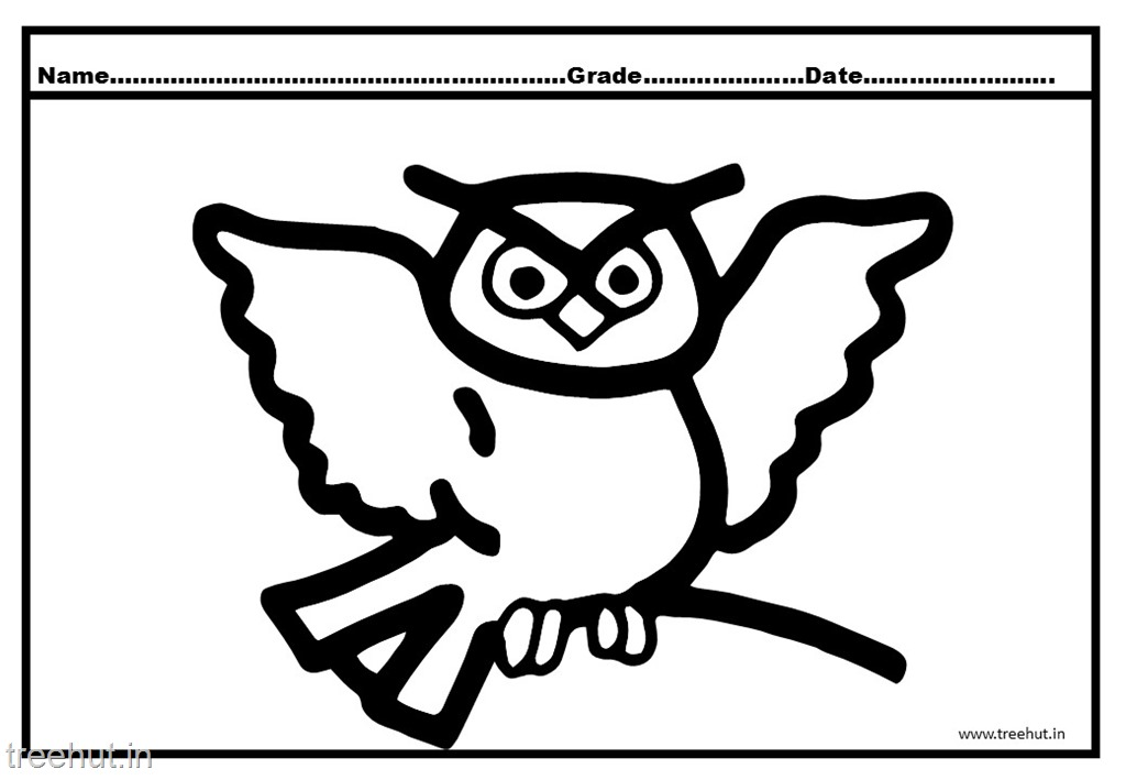Owl Coloring Pages For Kindergarten Kids