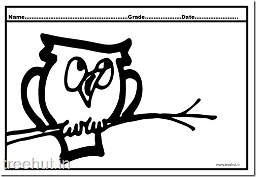 Owl, Nocturnal Birds Coloring Pages (4)