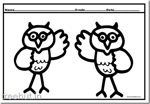Owl, Nocturnal Birds Coloring Pages (6)