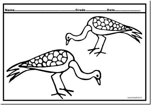 Peacock Coloring Pages (3)
