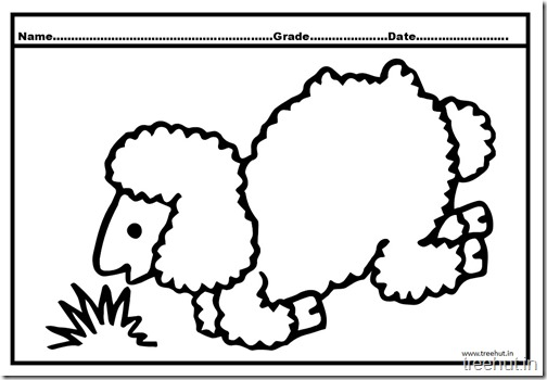 sheep coloring pages (1)