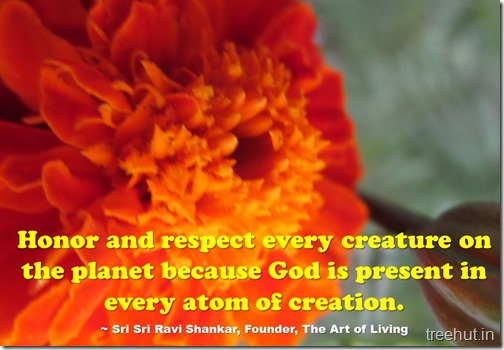 Sri Sri Ravi Shankar Quotes (4)