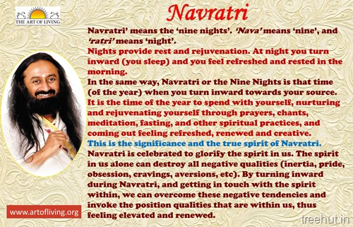 The Art of Living Navratri Celebrations