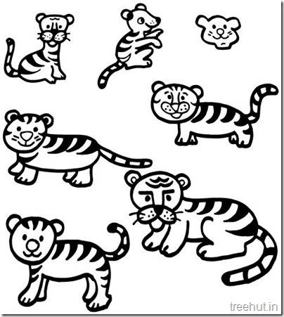 Tiger and Tiger Face Coloring Pages (1)