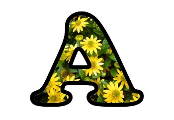 Yellow Flowers Bulletin Board Letters, Numbers, Symbols, Spring Alphabets