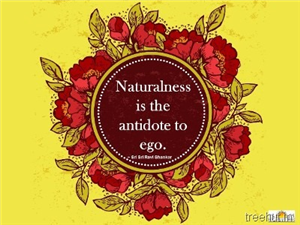 Quote on Ego, by Sri Sri Ravi Shankar